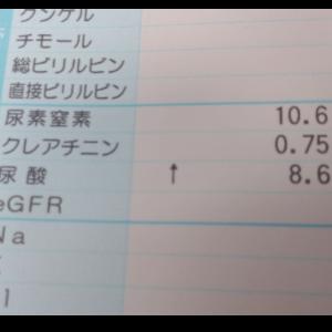 尿酸値高め